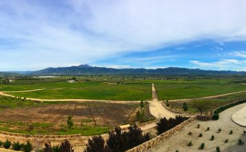 View from Vinos las Nubes